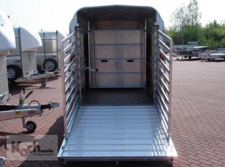 Anhänger типа Sonstige Viehanhänger TA5  156x250cm Höhe:183 2,7t|Ifor Williams (Vi0613Iw), Neumaschine в Winsen (Luhe) (Фотография 8)