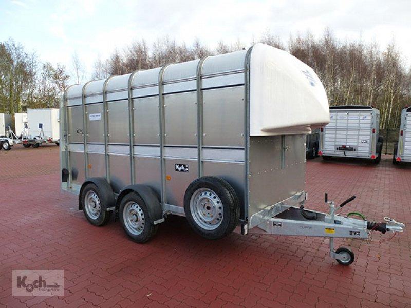 Anhänger типа Sonstige Viehanhänger TA5 HD 156x372cm Höhe 183 3,5t Ifor Williams (Vi1770Iw), Neumaschine в Winsen (Luhe) (Фотография 1)