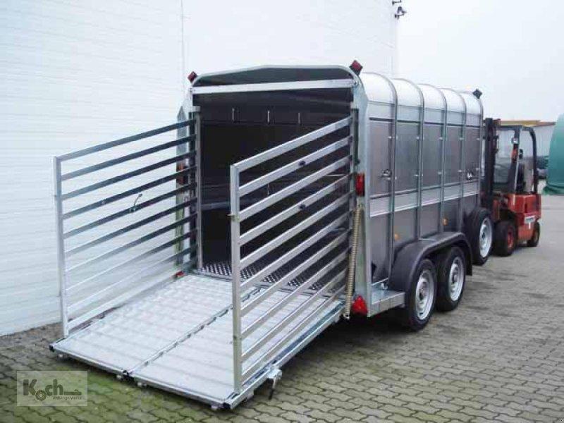 Bild Sonstige Viehtransporter TA 510G10 178x301 3,5t Rampe/Tür (Vi0597Iw)