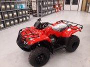 Honda TRX 250 TM ATV & Quad