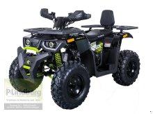 P.Lindberg GmbH Quad ATV Hunter 200 Offroad Max. 60 km/h 169 ccm 8,3 kW LED Scheibenbremsen ATV & Quad