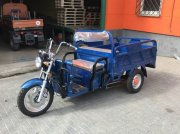 Sfoggia Competent GmbH Delta-Elektro-Carrier ATV & Quad