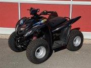 ATV & Quad типа Sonstige 80 S, Gebrauchtmaschine в Hobro