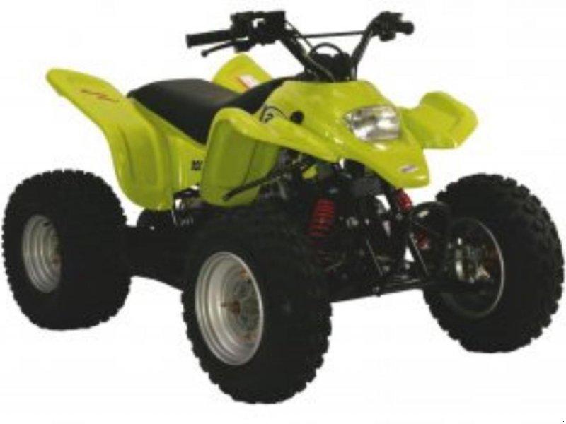 ATV & Quad типа Sonstige SMC ATV 100 RACING E, Gebrauchtmaschine в Videbæk (Фотография 1)