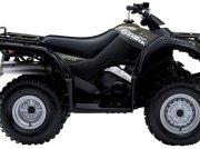 Suzuki LT-F250 GRØN ATV & Quad