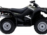ATV & Quad a típus Suzuki LT-F250L8 GRØN, Gebrauchtmaschine ekkor: Videbæk