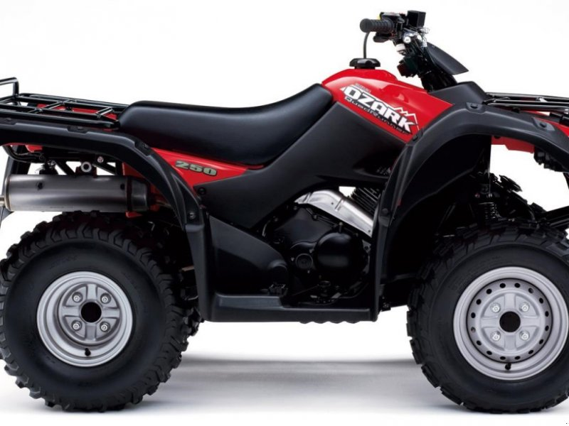 ATV & Quad типа Suzuki LT-F250L8 RØD ATV, Gebrauchtmaschine в Videbæk (Фотография 1)
