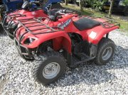 Yamaha Big bear 250 ATV & Quad