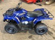 Yamaha GRIZZLY 300 ATV & Quad