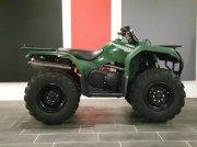 ATV & Quad a típus Yamaha Grizzly 350, Gebrauchtmaschine ekkor: Geesteren (OV)