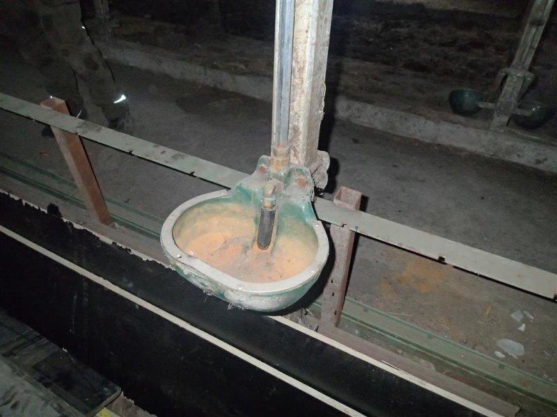 Aufstallung типа Sonstige drikkekopper, Gebrauchtmaschine в Egtved (Фотография 1)
