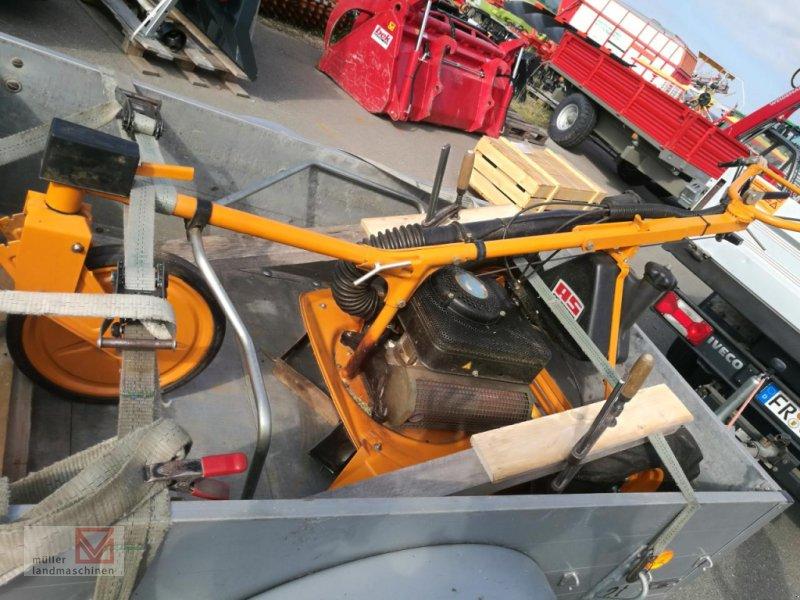 Bild AS-Motor AS28 2T