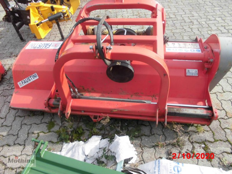 Böschungsmähgerät des Typs Faustini TP200, Gebrauchtmaschine in Neumarkt (Bild 1)