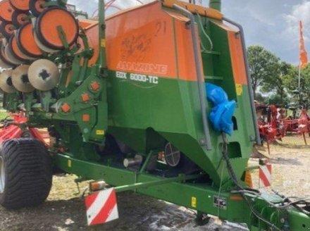 Drillmaschine des Typs Amazone EDX 6000 TC, Gebrauchtmaschine in Lohe-Rickelshof (Bild 1)
