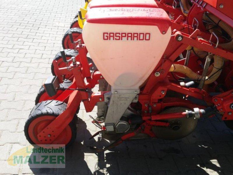 Drillmaschine des Typs Gaspardo ST300 540 6 File, Gebrauchtmaschine in Mitterteich (Bild 3)