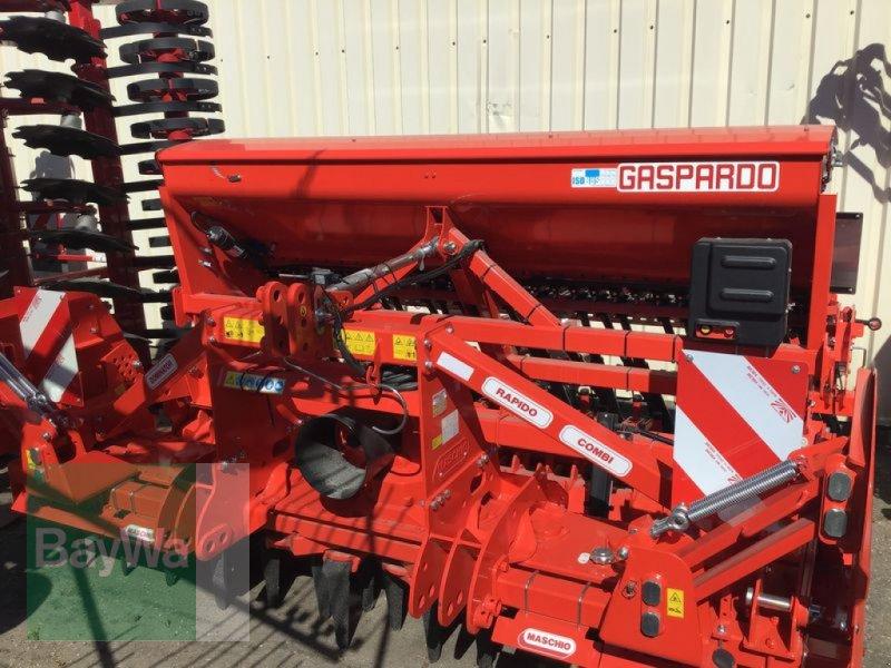 Drillmaschinenkombination des Typs Maschio DM - RAPIDO PLUS 3000, Vorführmaschine in Kleinengstingen (Bild 1)