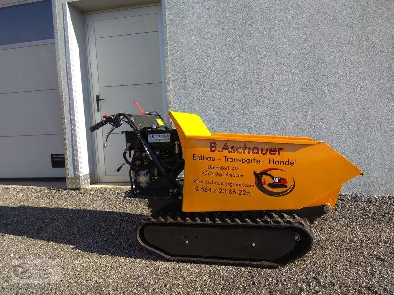 Dumper a típus Sonstige Minidumper EDH 500 C, Neumaschine ekkor: Bad Kreuzen (Kép 1)