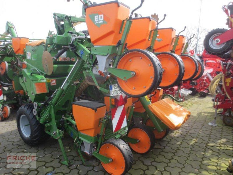 Einzelkornsägerät типа Amazone ED 602 K CLASSIC, Gebrauchtmaschine в Bockel - Gyhum (Фотография 1)