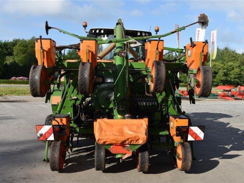 Einzelkornsägerät типа Amazone ED 602 - K, Gebrauchtmaschine в Grindsted (Фотография 3)