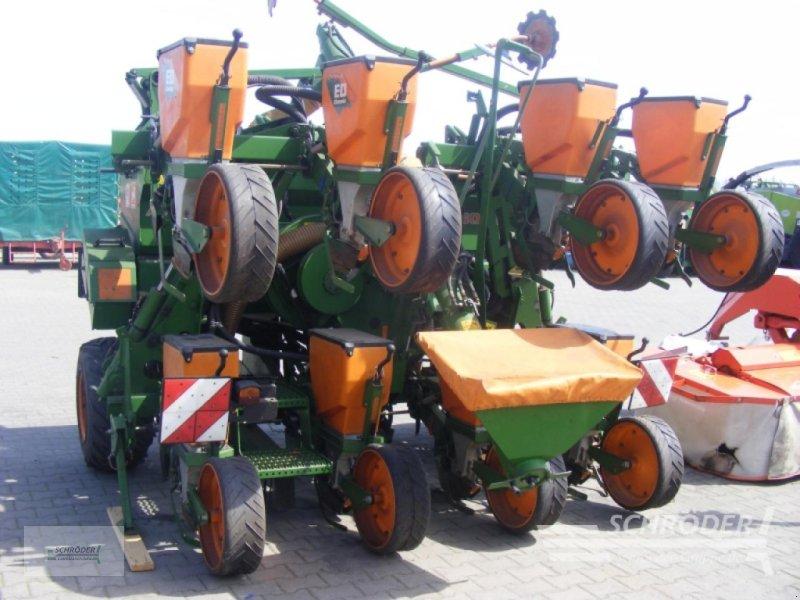 Einzelkornsägerät типа Amazone ED 602-K, Gebrauchtmaschine в Lastrup (Фотография 1)