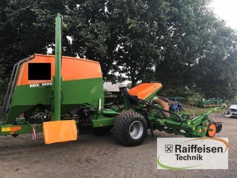 Einzelkornsägerät des Typs Amazone EDX 6000 TC, Gebrauchtmaschine in Kisdorf (Bild 1)