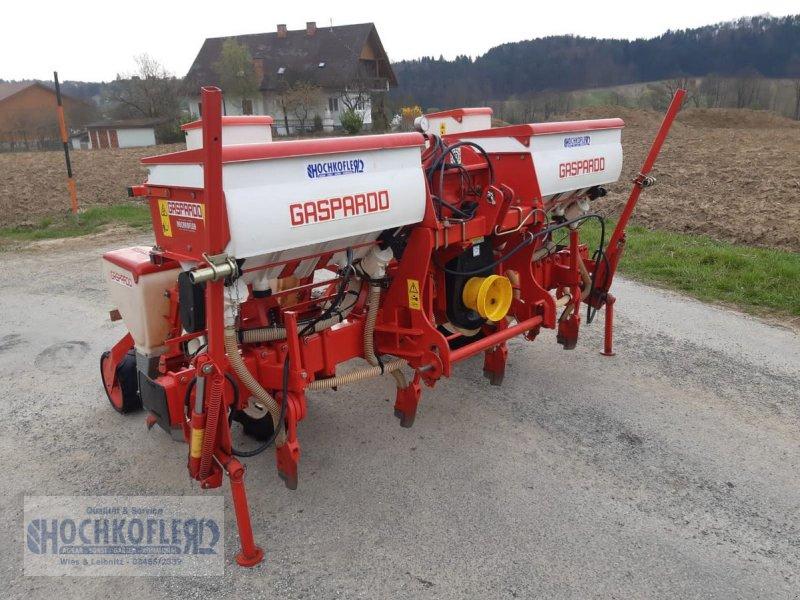 Einzelkornsägerät des Typs Gaspardo SP Maissetze 4 Reihig, Gebrauchtmaschine in Wies (Bild 1)