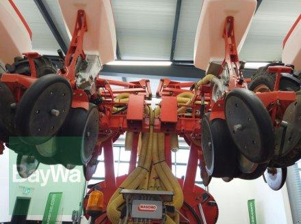 Einzelkornsägerät des Typs Maschio GASPARDO MANTA 8- REIHIG, Gebrauchtmaschine in Manching (Bild 15)