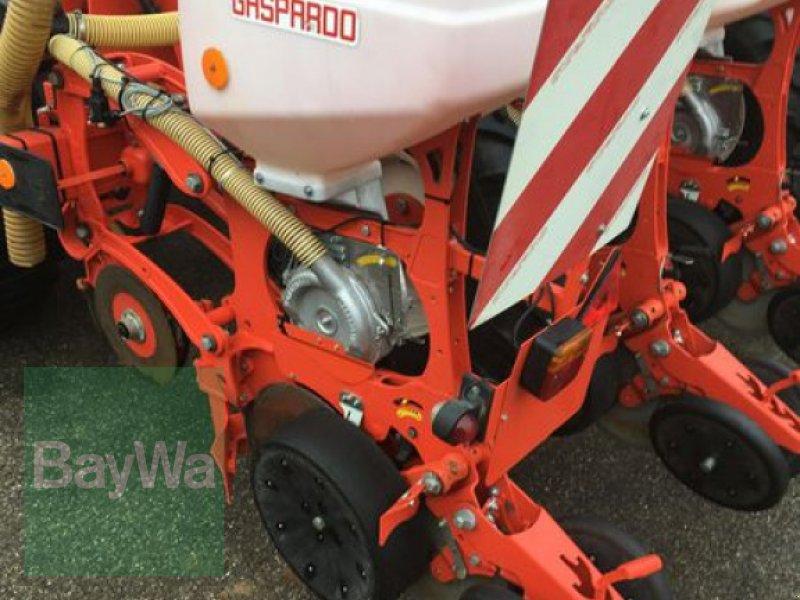 Einzelkornsägerät des Typs Maschio Gaspardo Manta 8- Reihig, Gebrauchtmaschine in Obertraubling (Bild 11)