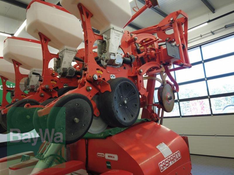 Einzelkornsägerät des Typs Maschio MIRKA 8- REIHIG, Gebrauchtmaschine in Manching (Bild 13)