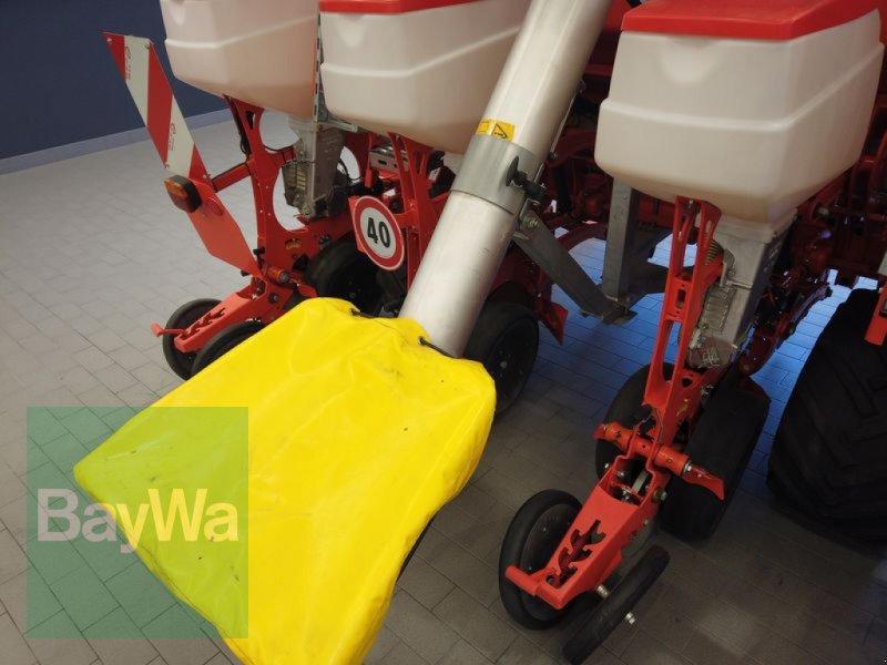 Einzelkornsägerät des Typs Maschio MIRKA 8- REIHIG, Gebrauchtmaschine in Manching (Bild 14)