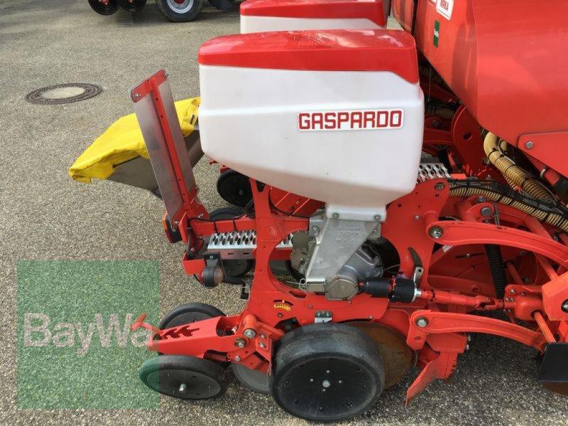 Einzelkornsägerät des Typs Maschio MIRKA 8- REIHIG, Gebrauchtmaschine in Obertraubling (Bild 11)