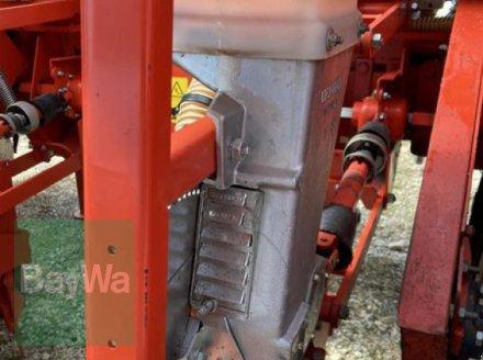 Einzelkornsägerät des Typs Maschio MTE BB-XL, Gebrauchtmaschine in Schwäbisch Gmünd - Herlikofen (Bild 8)