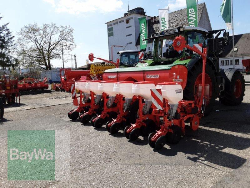 Einzelkornsägerät des Typs Maschio MTE-R 300 EK-SÄMASCHINE GASP., Neumaschine in Neumarkt, Oberpf (Bild 8)