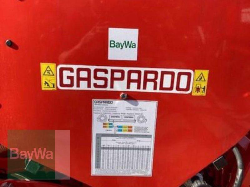 Einzelkornsägerät des Typs Maschio MTE-R 300 EK-SÄMASCHINE GASP., Neumaschine in Neumarkt, Oberpf (Bild 4)