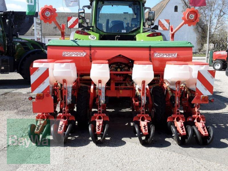Einzelkornsägerät des Typs Maschio MTE-R 300 EK-SÄMASCHINE GASP., Neumaschine in Neumarkt, Oberpf (Bild 5)