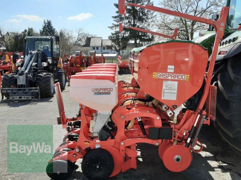 Einzelkornsägerät des Typs Maschio MTE-R 300 EK-SÄMASCHINE GASP., Neumaschine in Neumarkt, Oberpf (Bild 7)