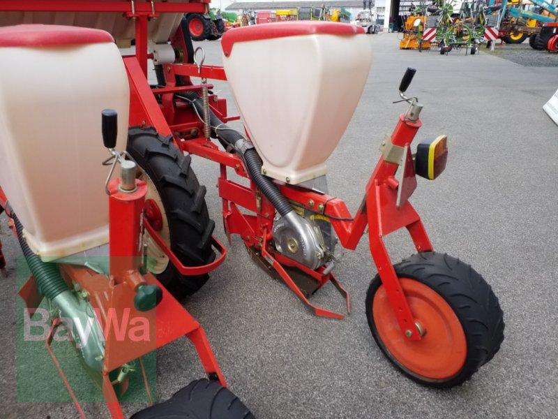 Einzelkornsägerät des Typs Maschio SP 4, Gebrauchtmaschine in Bamberg (Bild 12)