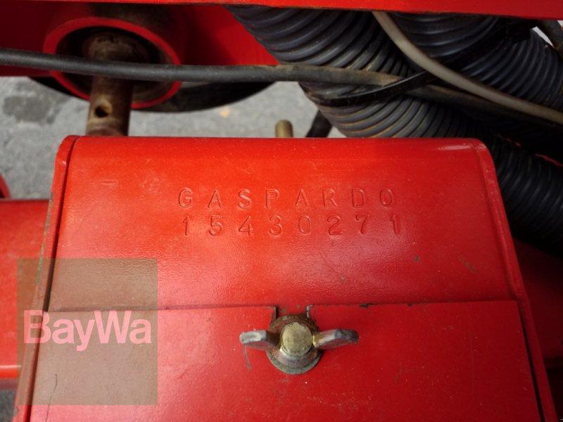 Einzelkornsägerät des Typs Maschio SP 4, Gebrauchtmaschine in Bamberg (Bild 16)