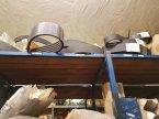 Feldhäcksler des Typs Case IH Mamut 7800 in Marlow