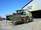 Feldhäcksler des Typs CLAAS Jaguar 830 in Schora