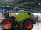 Feldhäcksler des Typs CLAAS JAGUAR 950 in Gollhofen