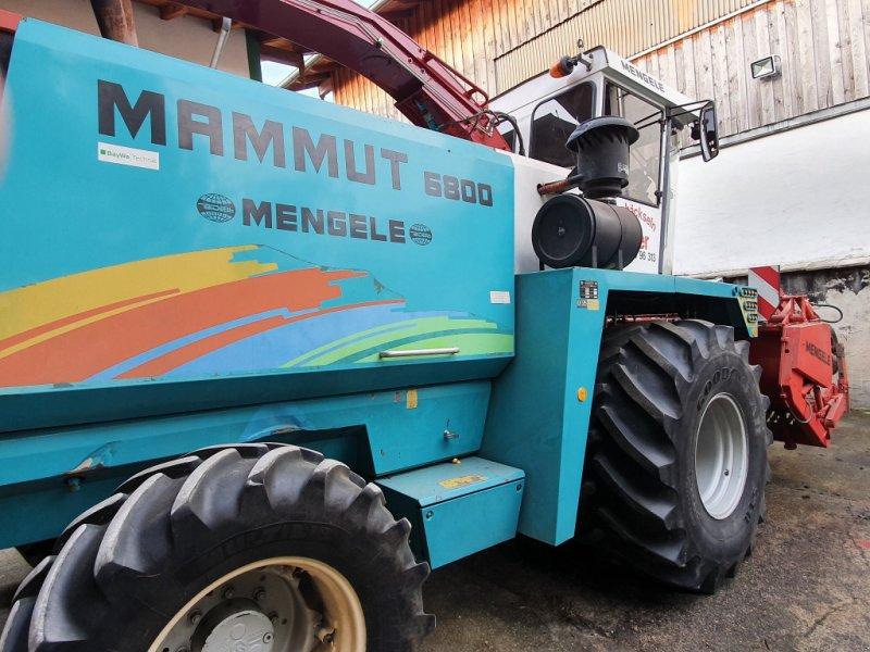 Feldhäcksler des Typs Mengele Mammut 6800, Gebrauchtmaschine in Cham (Bild 4)