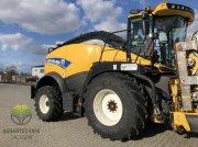 Feldhäcksler des Typs New Holland FR 550, Vorführmaschine in Ebersbach