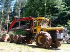 Forstschlepper типа Welte W210 в Glottertal
