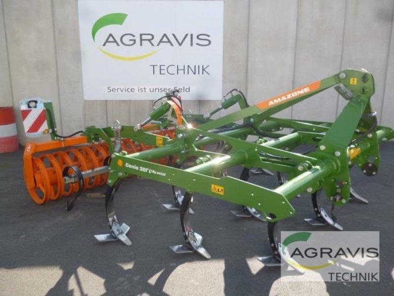 Grubber des Typs Amazone CENIO 3000 SPECIAL, Gebrauchtmaschine in Melle-Wellingholzhausen (Bild 1)