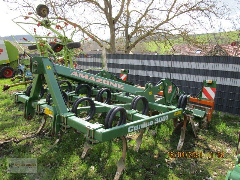 Grubber des Typs Amazone Cenius 3001, Gebrauchtmaschine in Niederkirchen (Bild 3)