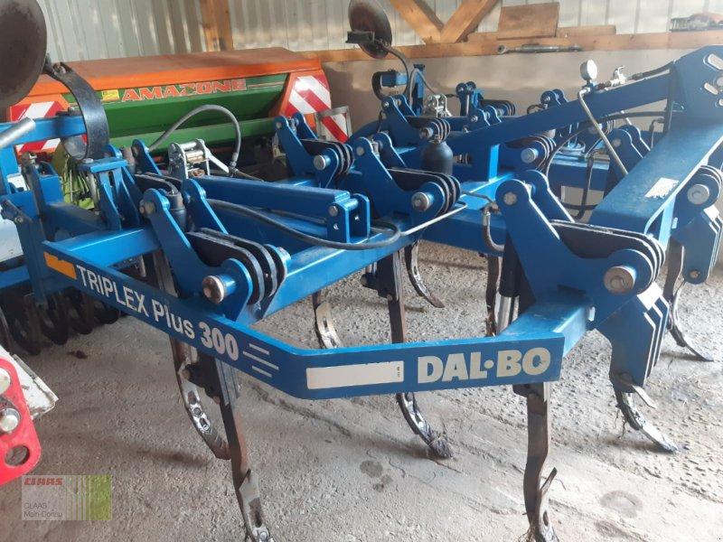 Grubber des Typs Dalbo Triplex Plus 300, Gebrauchtmaschine in Schlüsselfeld-Elsendorf (Bild 1)