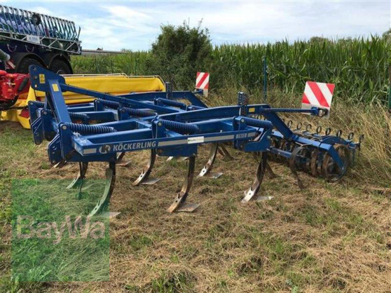 Grubber des Typs Köckerling KÖCKERLING TRIO, Gebrauchtmaschine in Blaufelden (Bild 2)