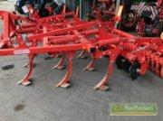 Grubber des Typs Maschio Terremoto 3 300, Gebrauchtmaschine in Bruchsal