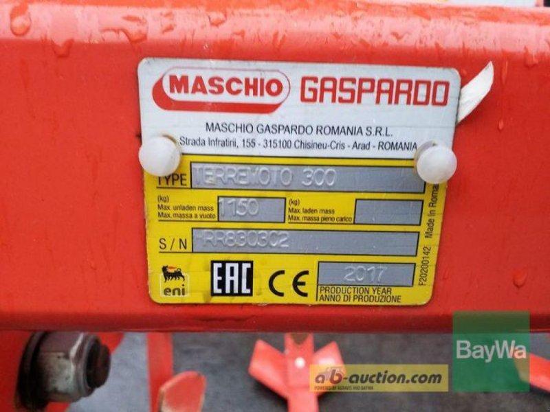 Grubber des Typs Maschio TERREMOTO 3 FEDERSICHERUNG DRW, Gebrauchtmaschine in Bamberg (Bild 14)